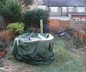 garden 1 before.jpg