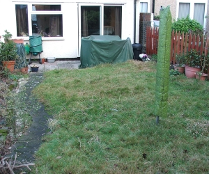 new garden before.jpg