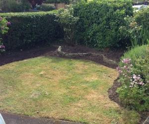 small garden.jpg